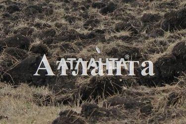 продается земельный участок в Дачном — 10000 у.е.